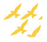 fuglar