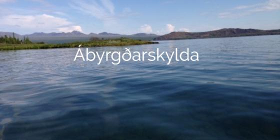 Abyrgdarskylda